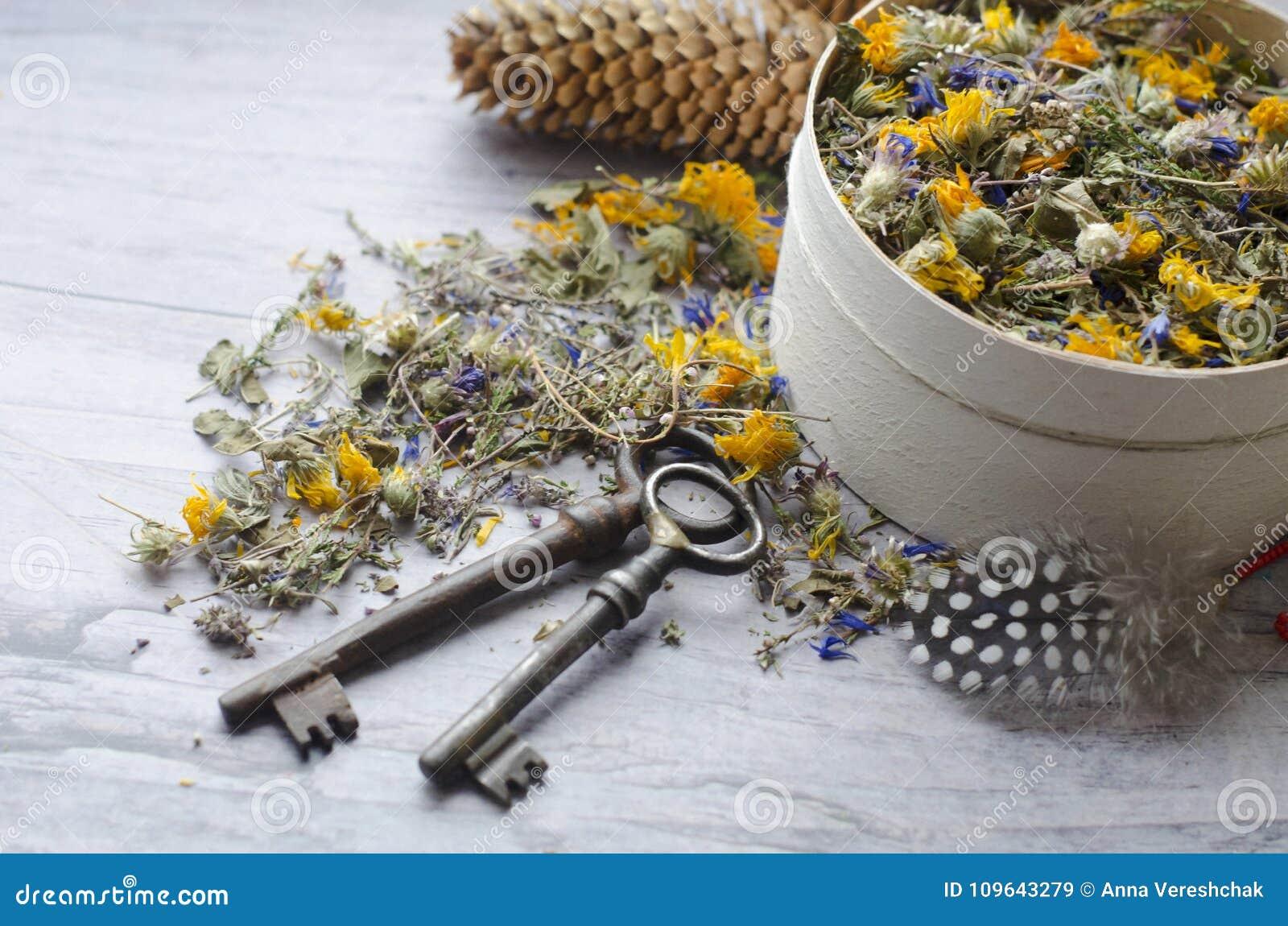 清凉茶用伊冯茶、矢车菊、金盏草、石南花和麝香草 健康和长寿的钥匙
