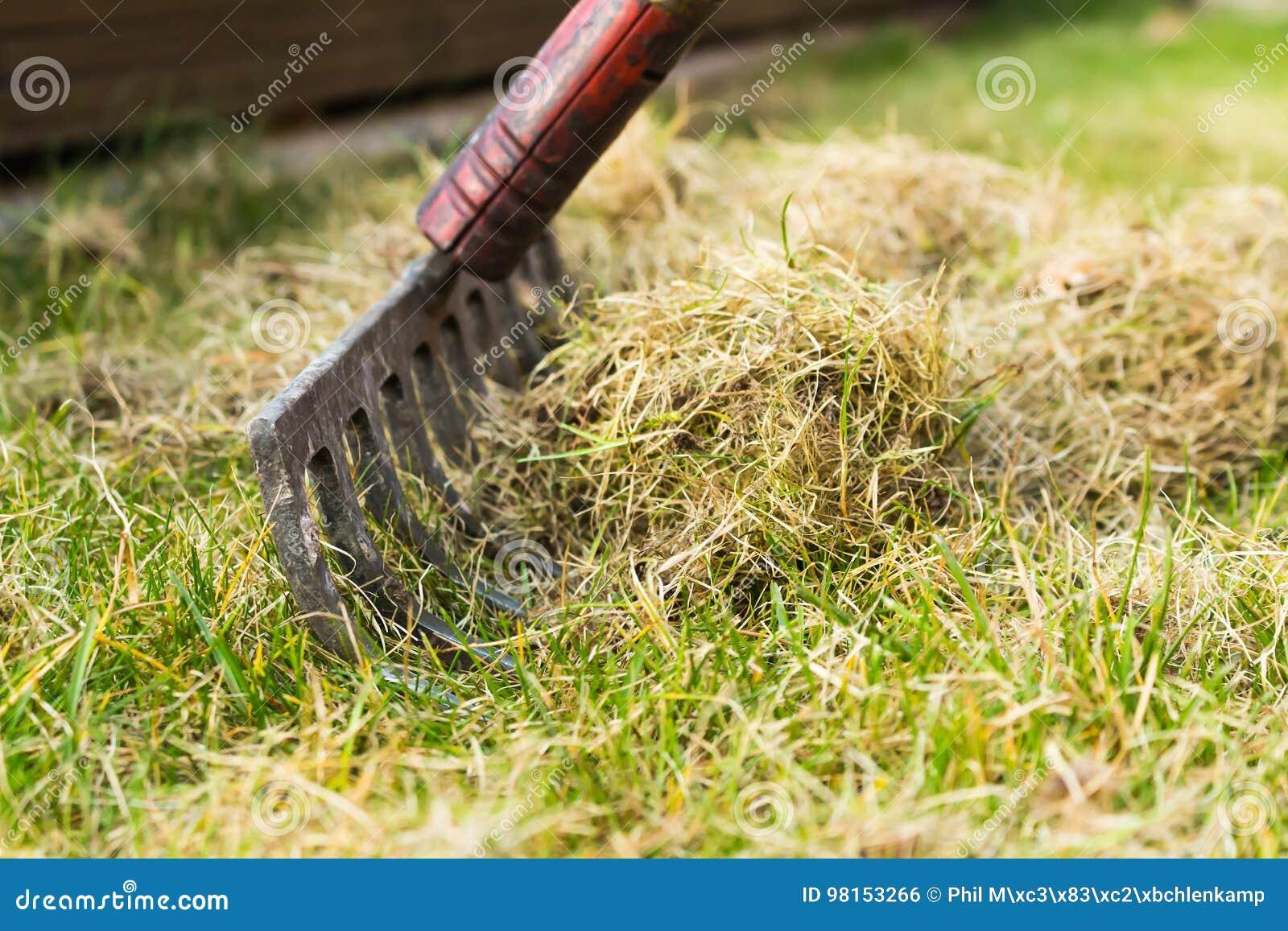 清扫草与犁耙