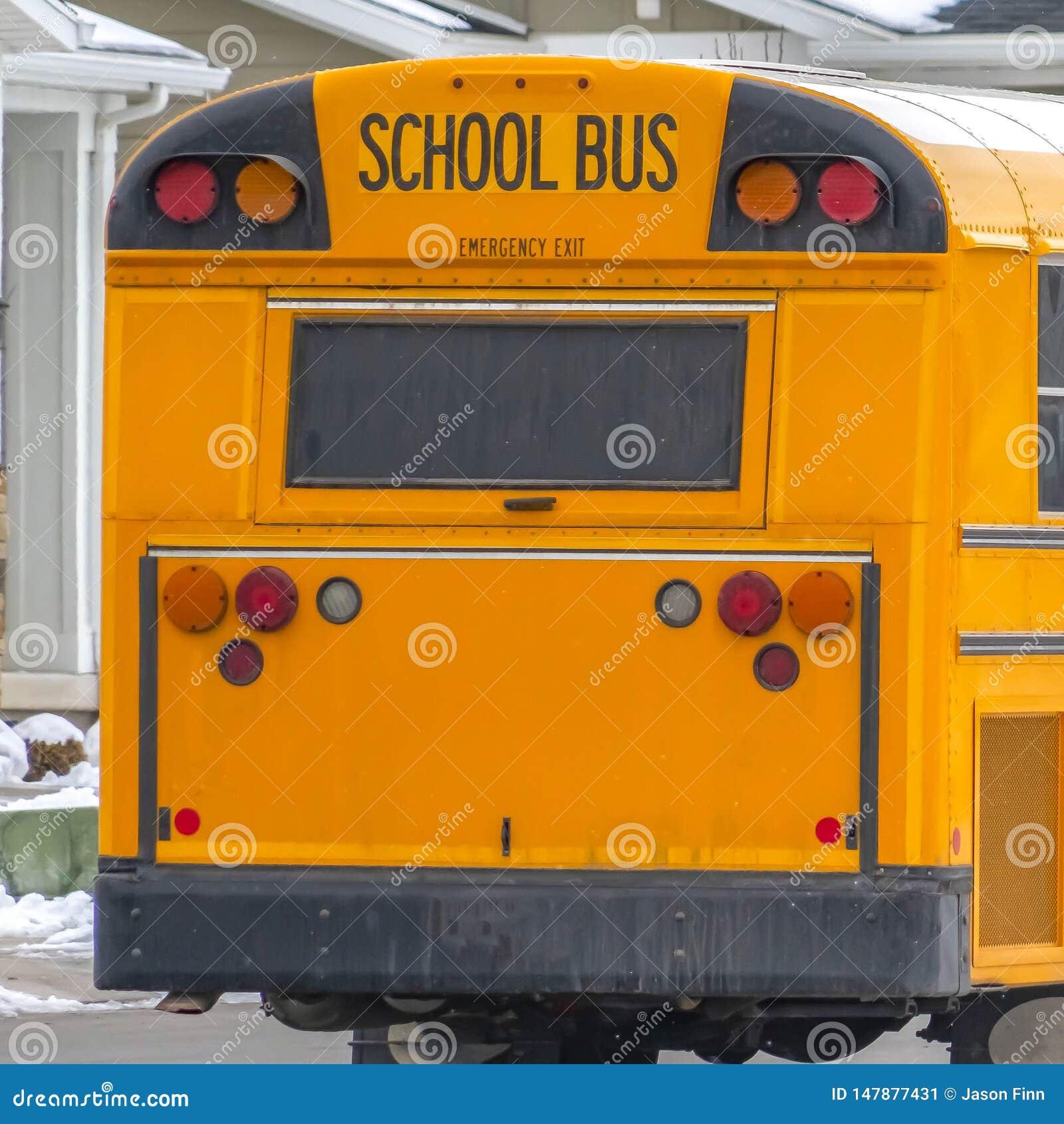 清楚的运行在有新鲜的雪的一条路的一黄色学校班车的正方形背面图在冬天