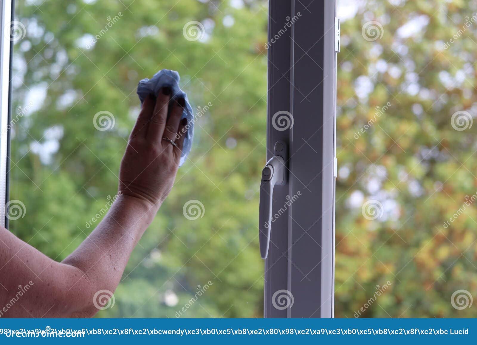 清洗窗口的夫人在一个现代房子里