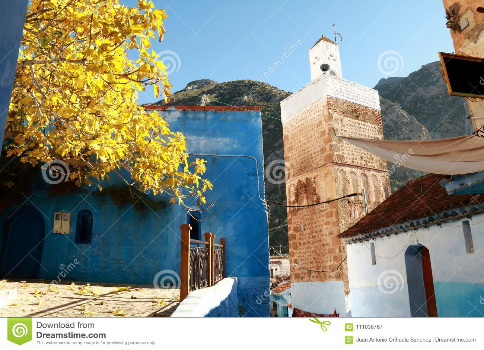 清真寺在村庄
