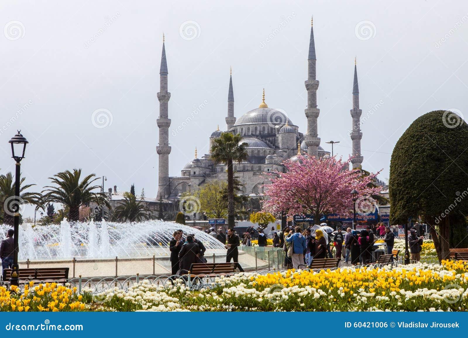 清真寺尖塔,伊斯坦布尔,土耳其