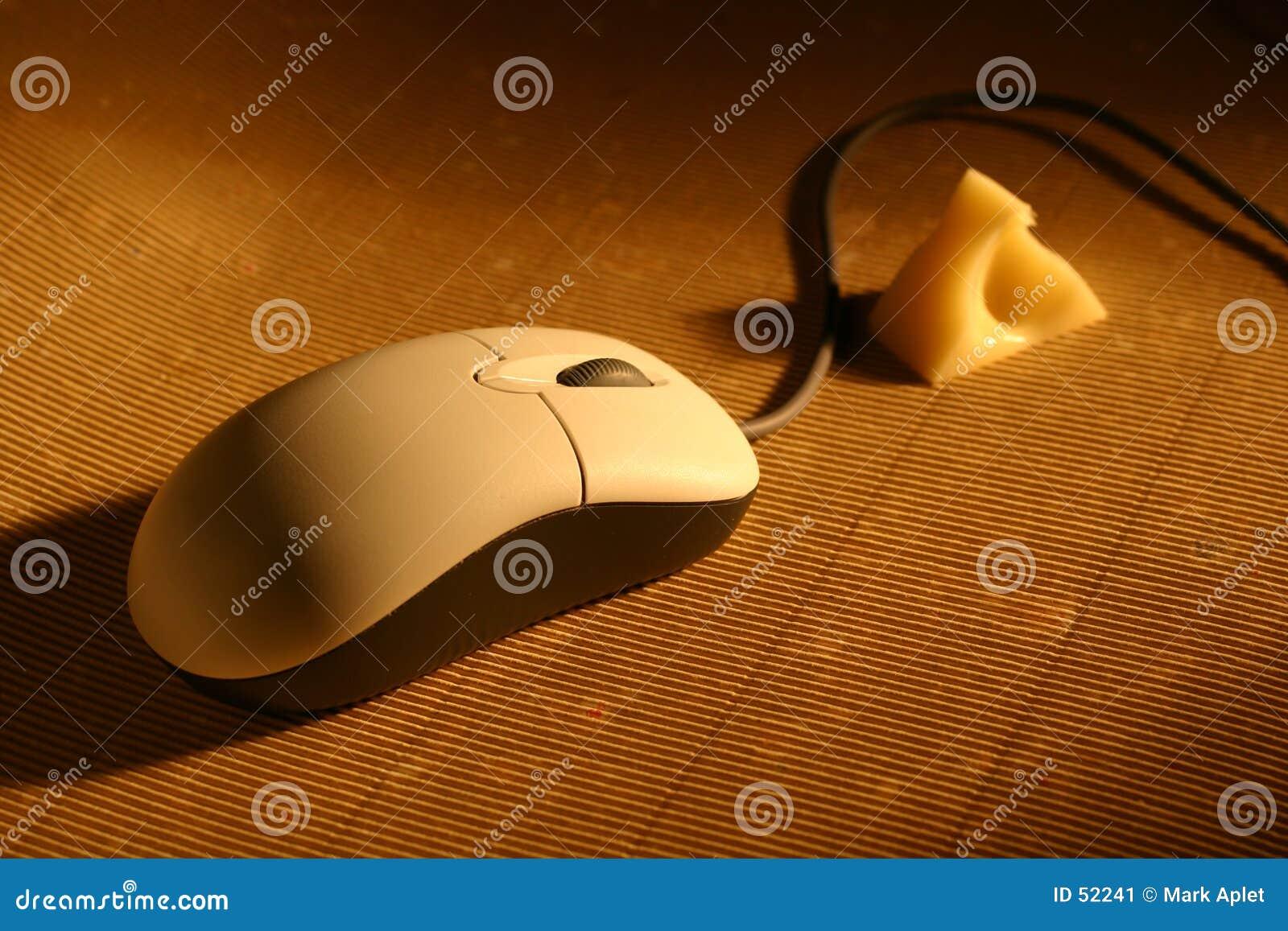 温暖干酪的鼠标