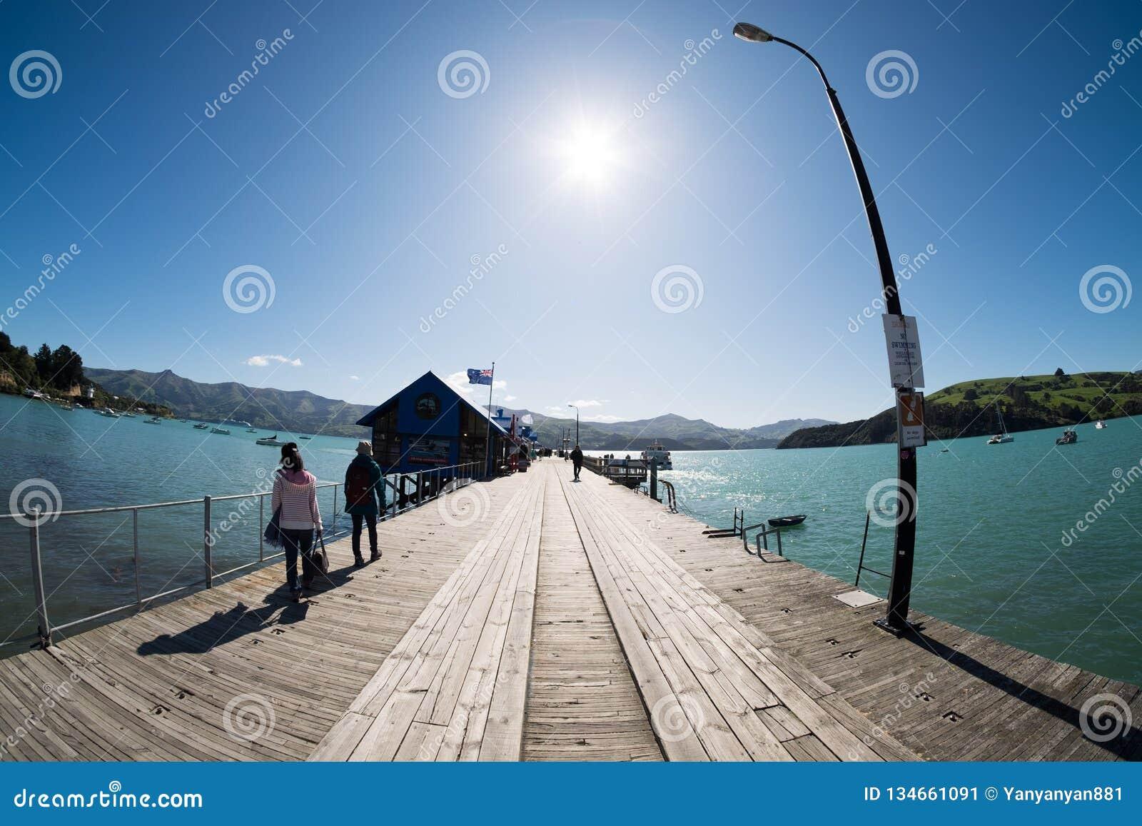 港口风景看法Akaroa的,新西兰