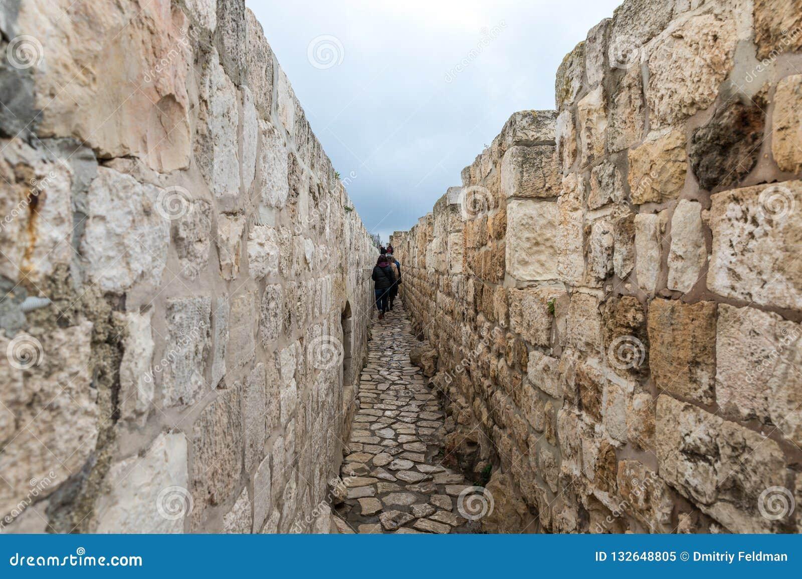 游人在城市墙壁上走并且在雅法门附近检查它在耶路撒冷,以色列老
