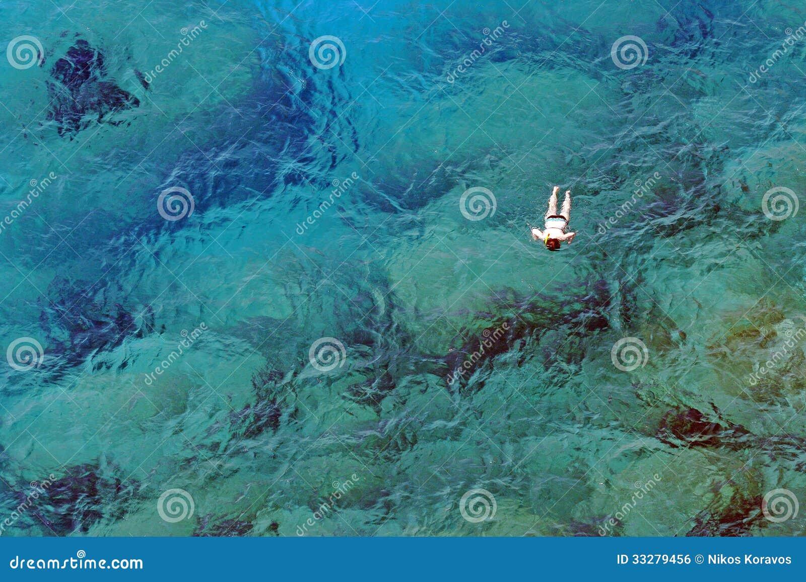 游泳在绿松石水域中