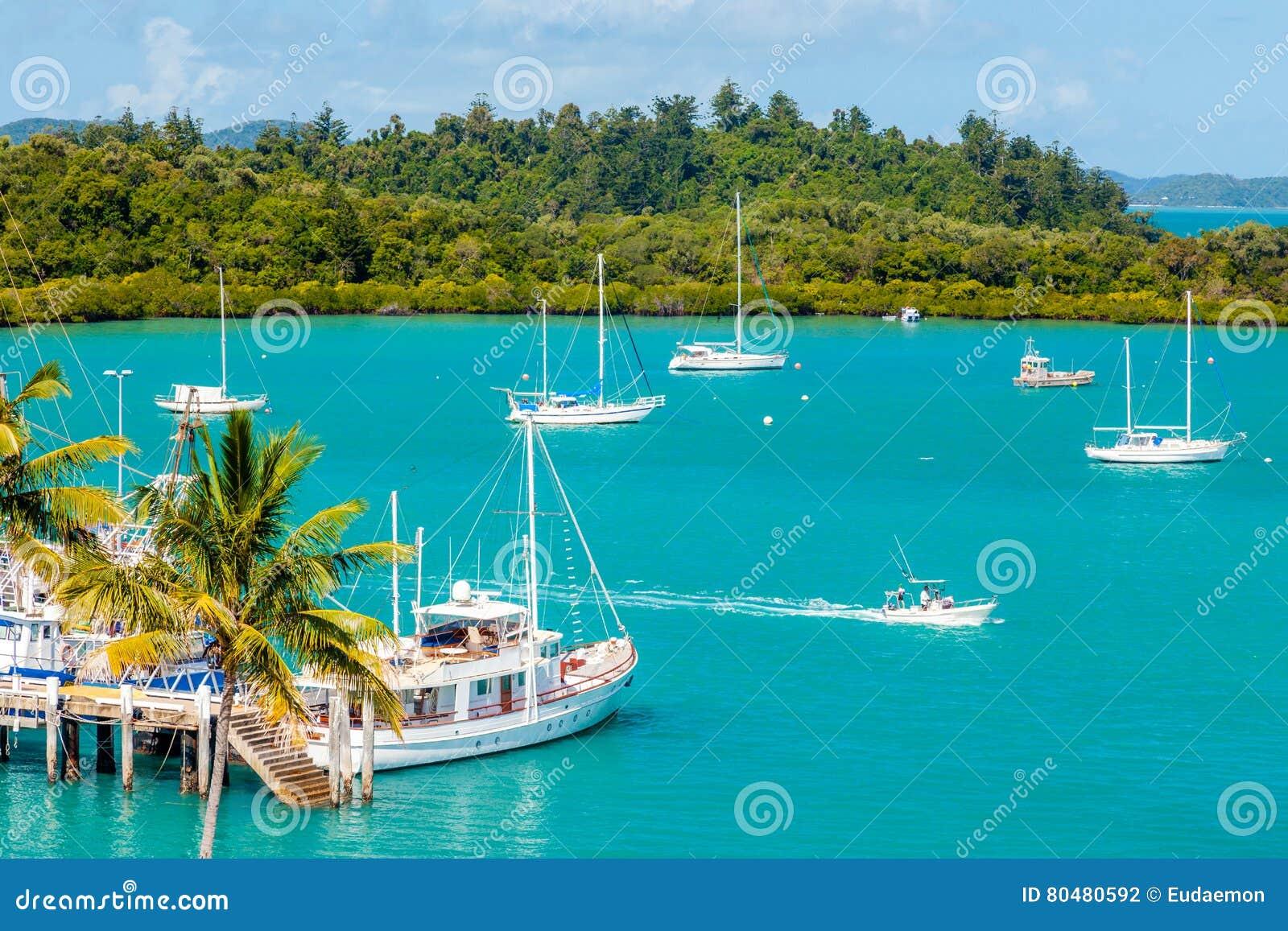 游艇和小船在热带小游艇船坞