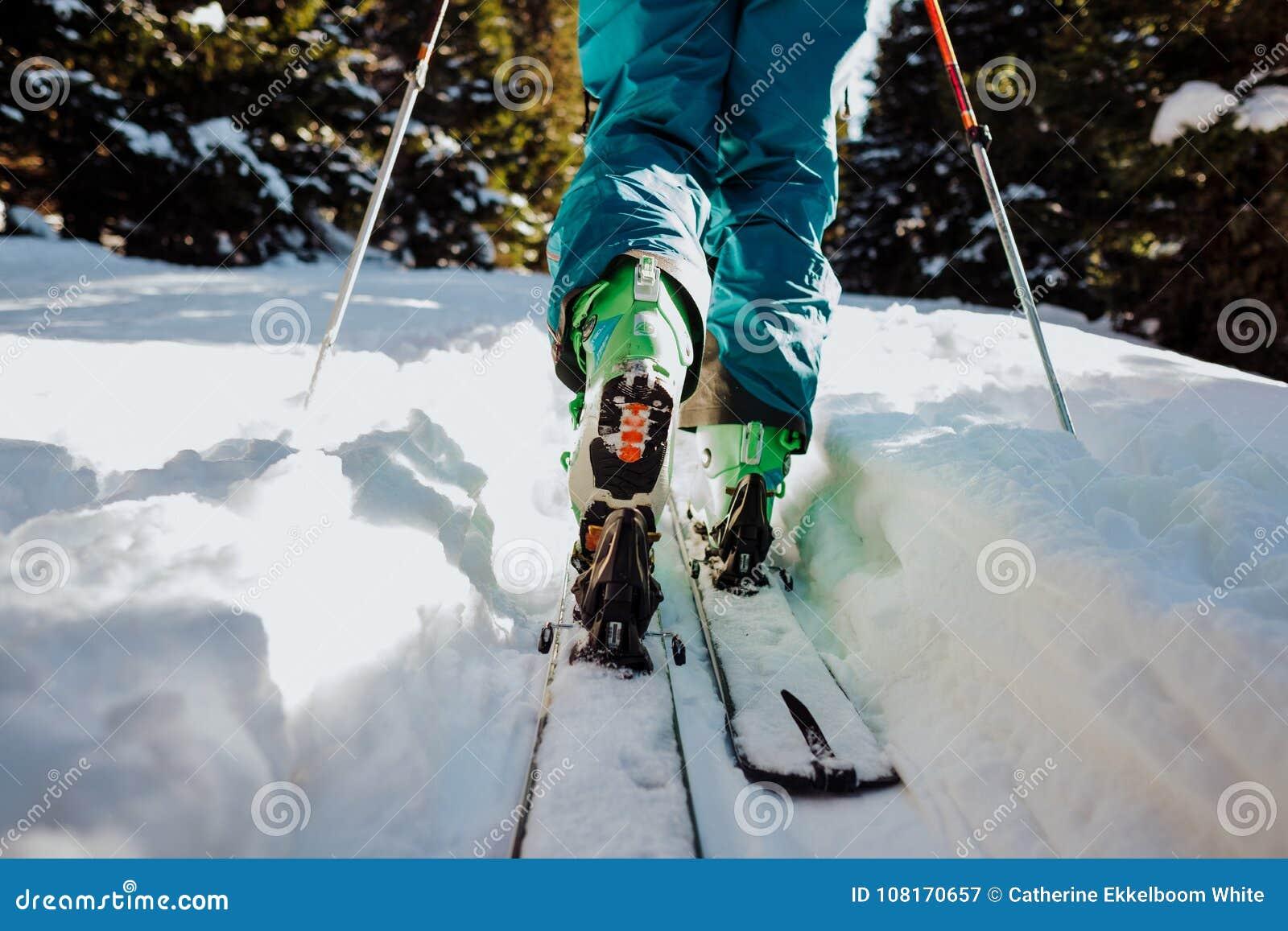 游览在冬天的滑雪在奥地利
