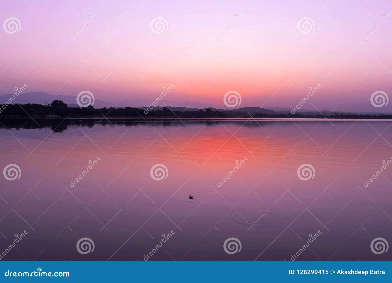 湖光彩的看法在太阳上升前的在清早