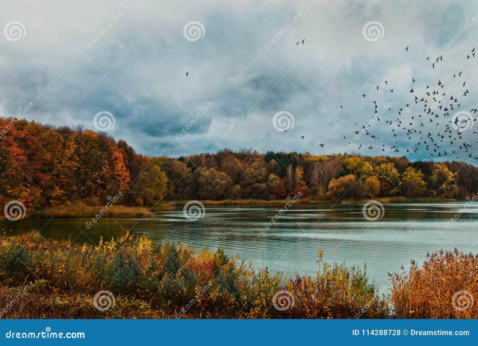 湖在利沃夫州地区