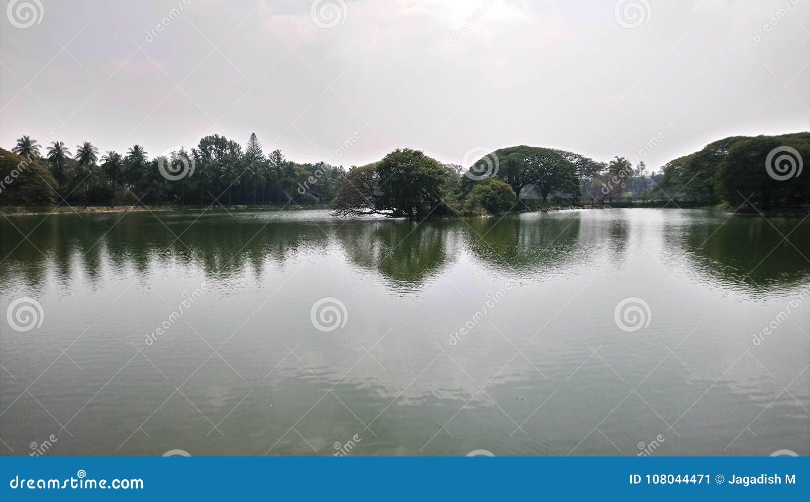 湖美丽的景色lal bagh的, Bengaluru 印度