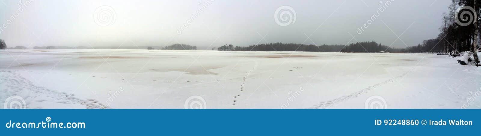 湖边在冬天