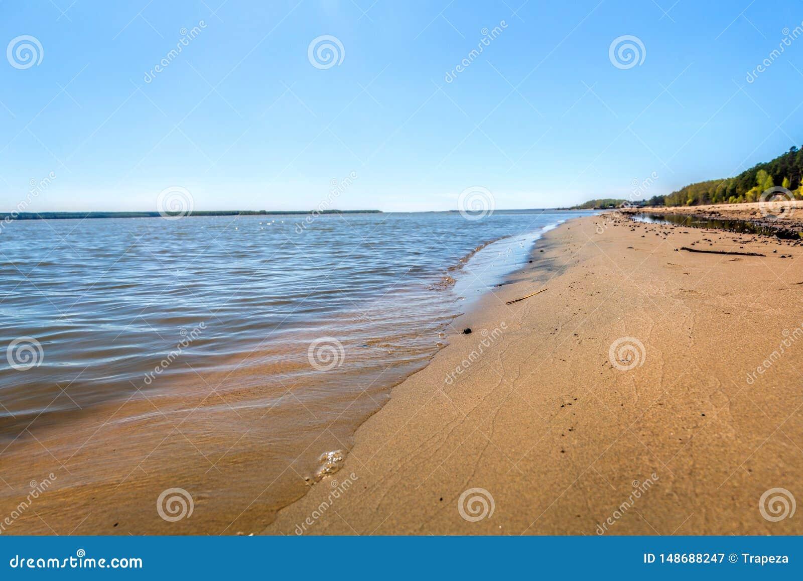 湖,夏天,海滩的岸