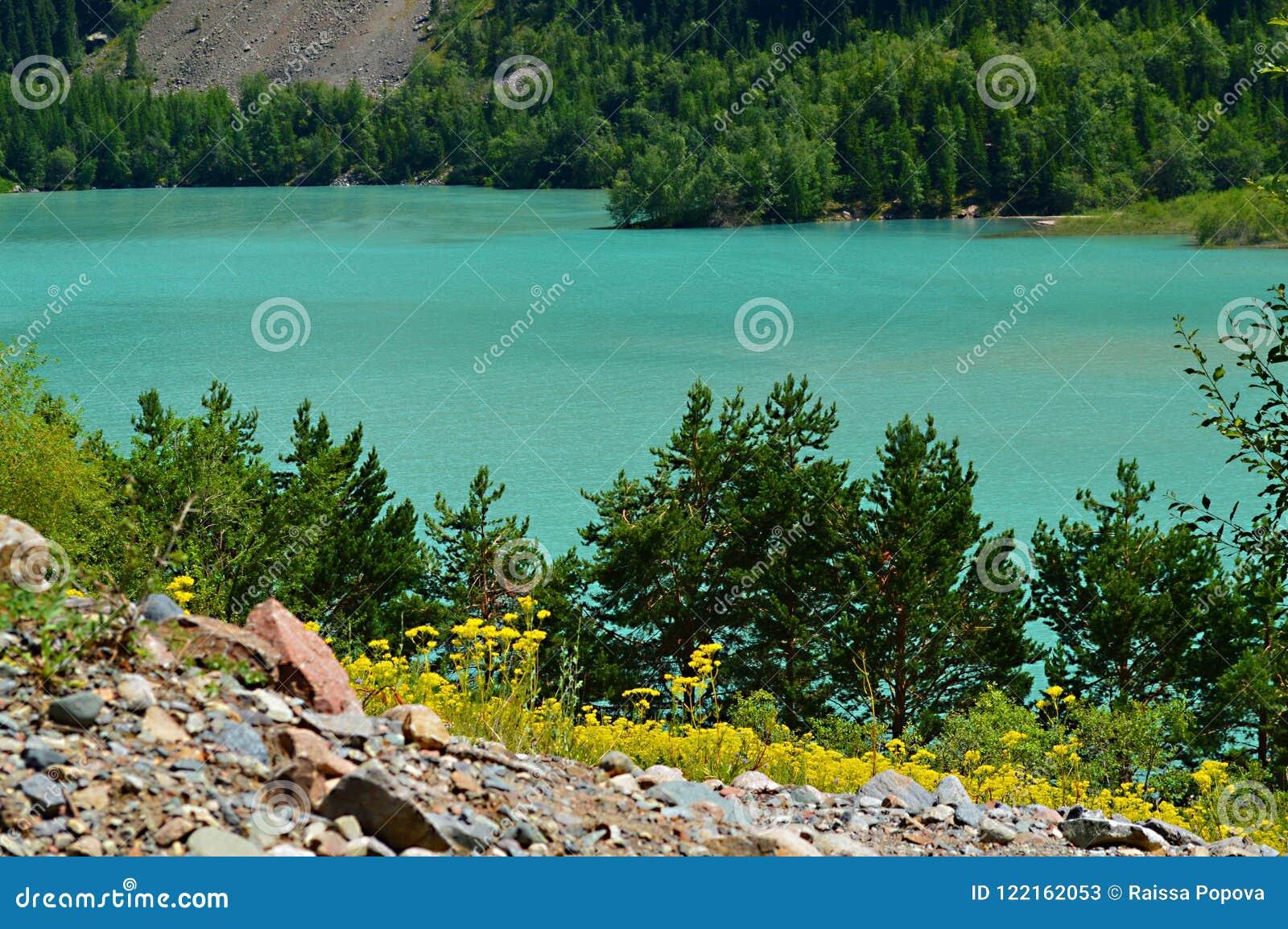 湖Issyk,国家公园,哈萨克斯坦