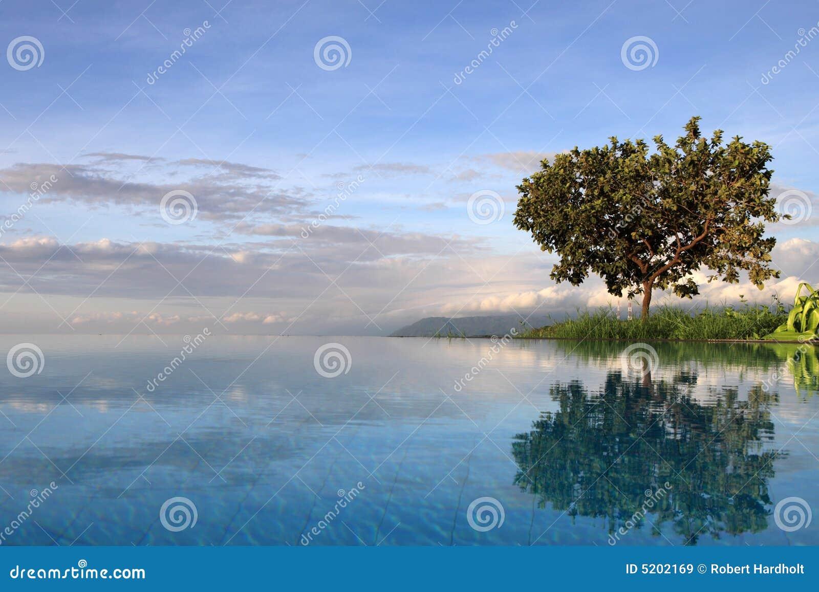 湖manyara池坦桑尼亚
