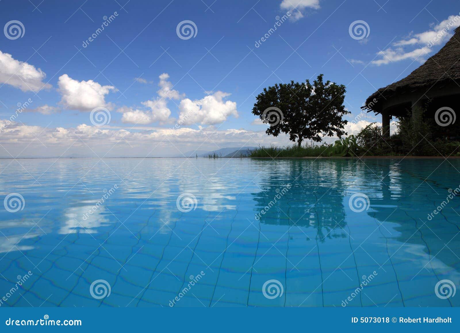 湖manyara游泳池坦桑尼亚