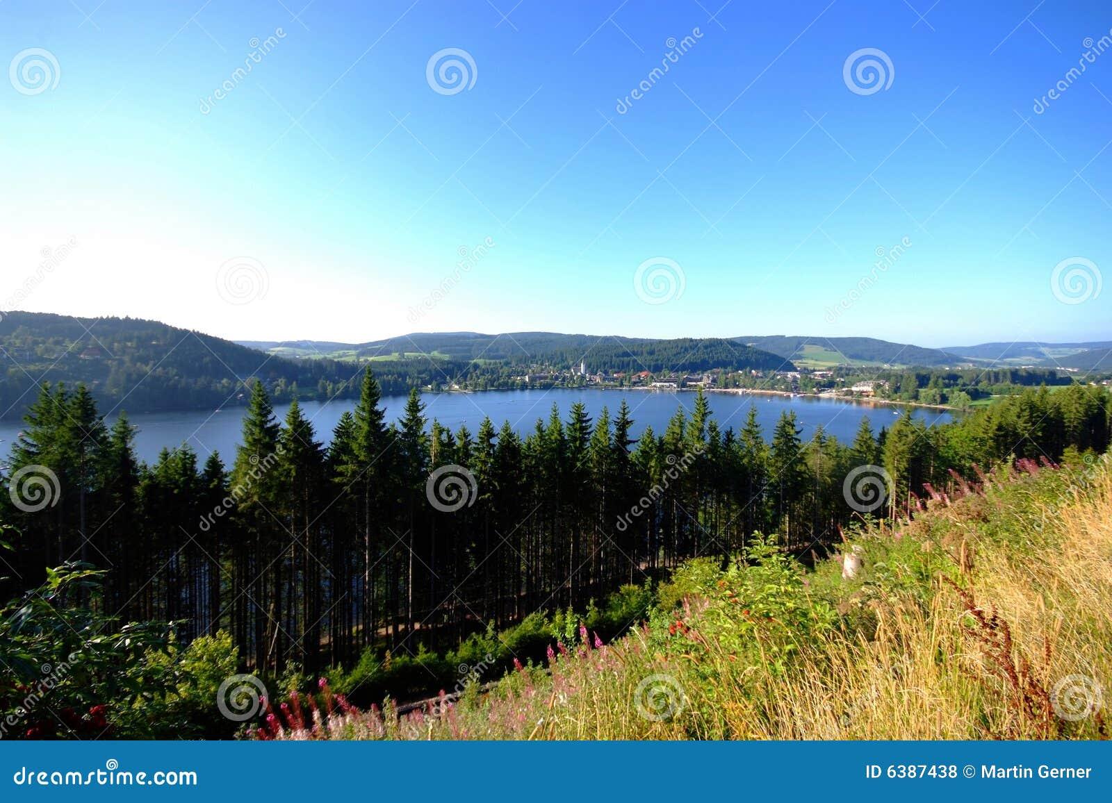 湖titisee