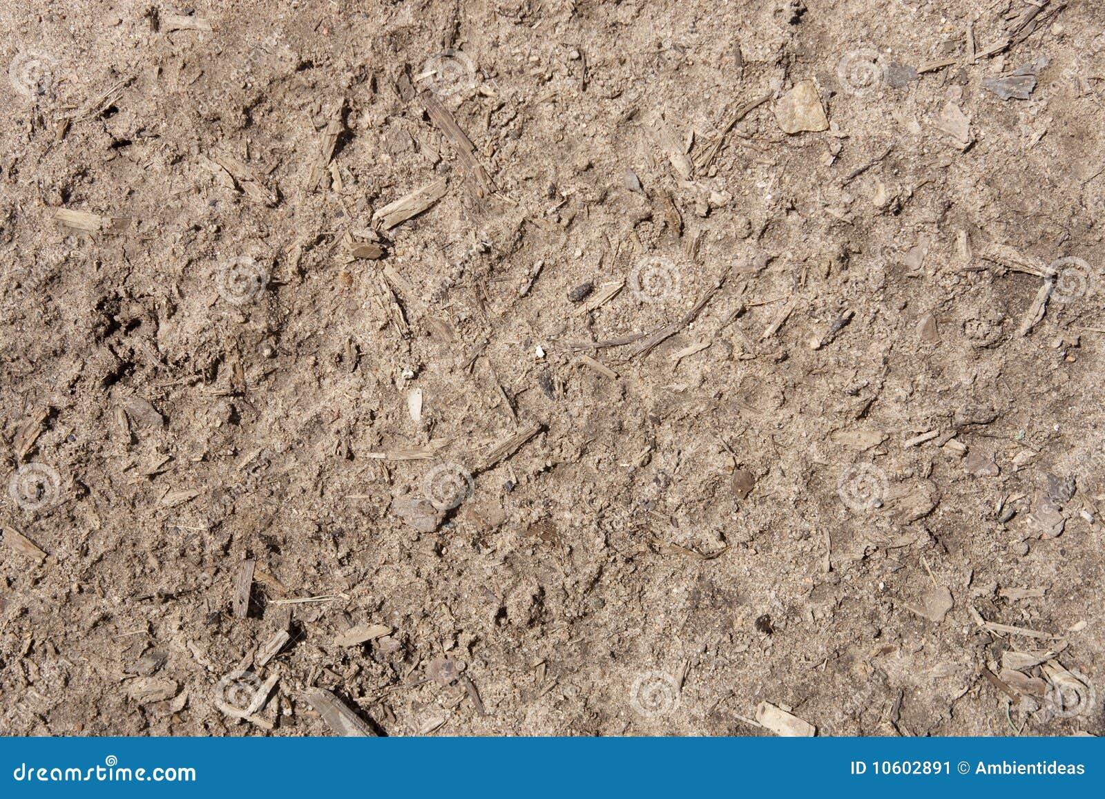 湿土的土壤