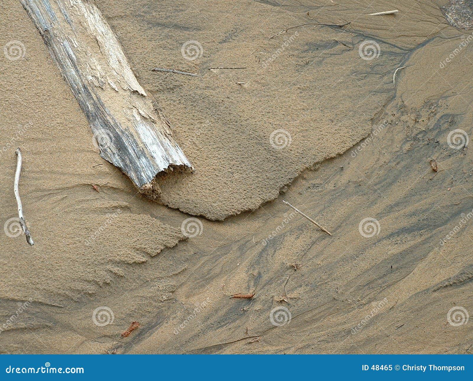 漂流木头沙子