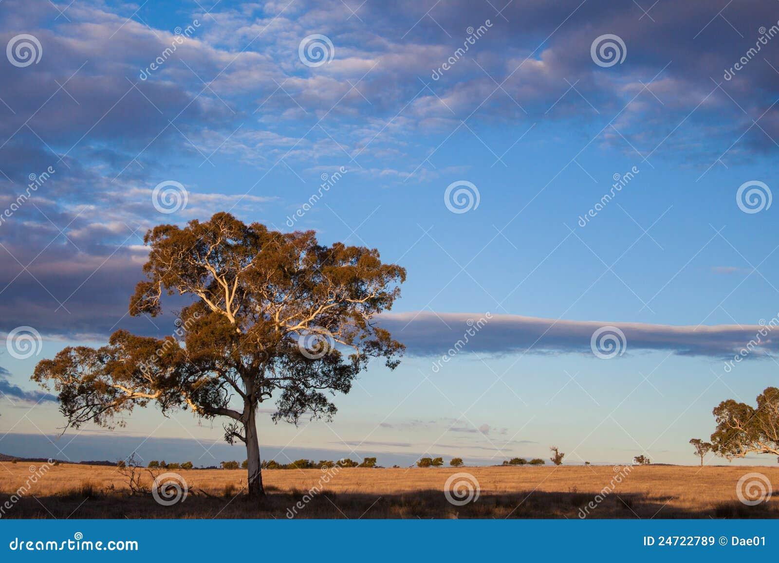 澳洲堪培拉资本最近的无格式领土
