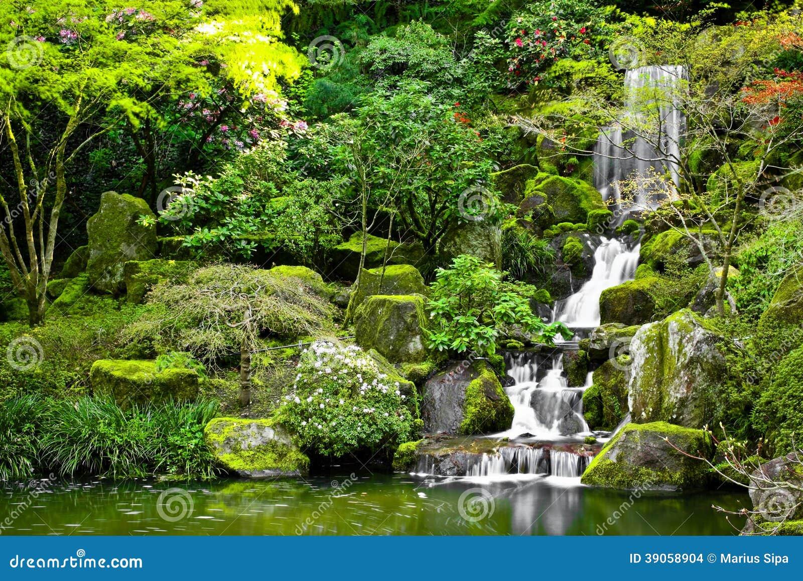 流动入一个koi池塘的小瀑布在日本庭院里.图片