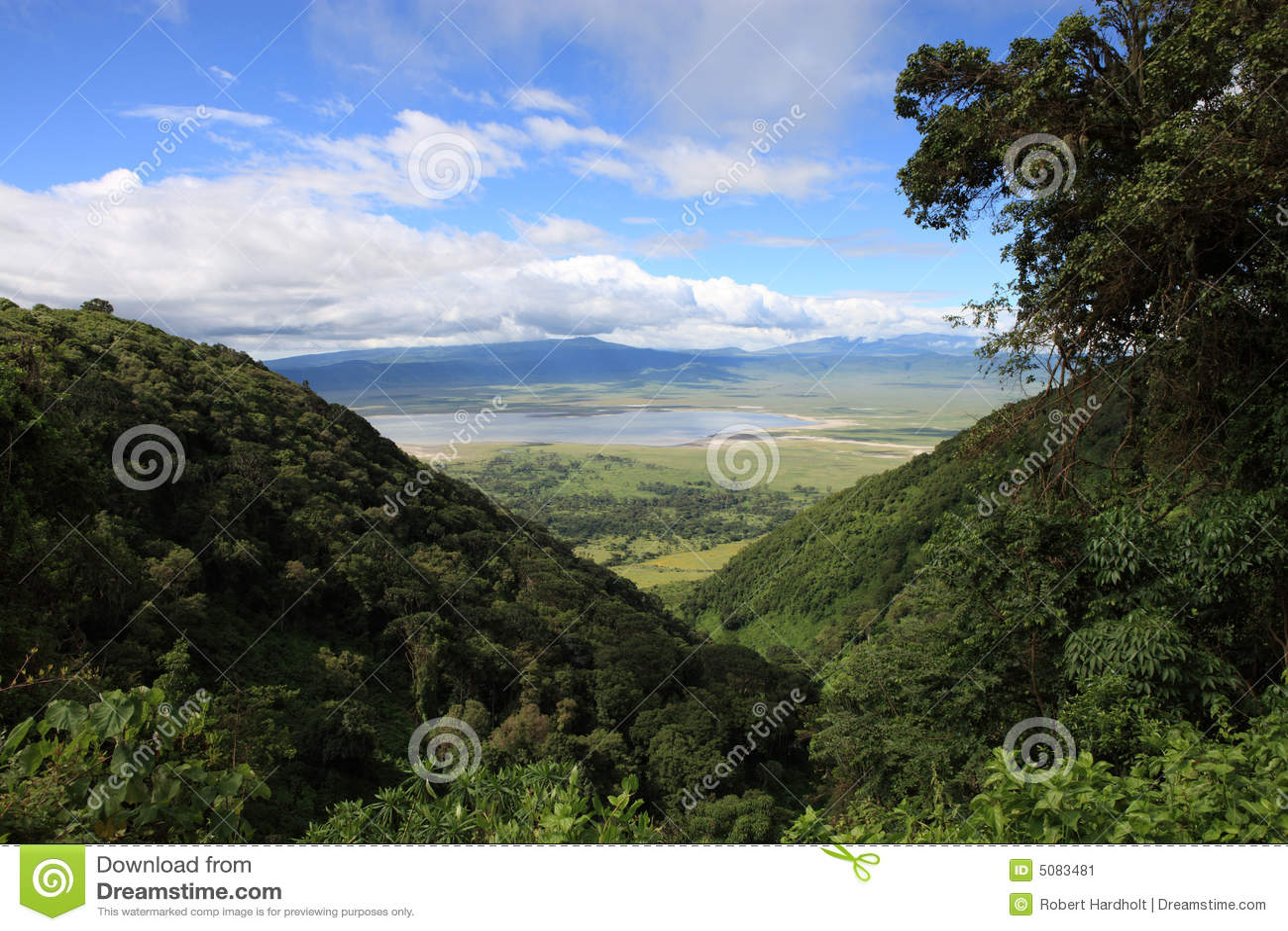 火山口ngorongoro坦桑尼亚