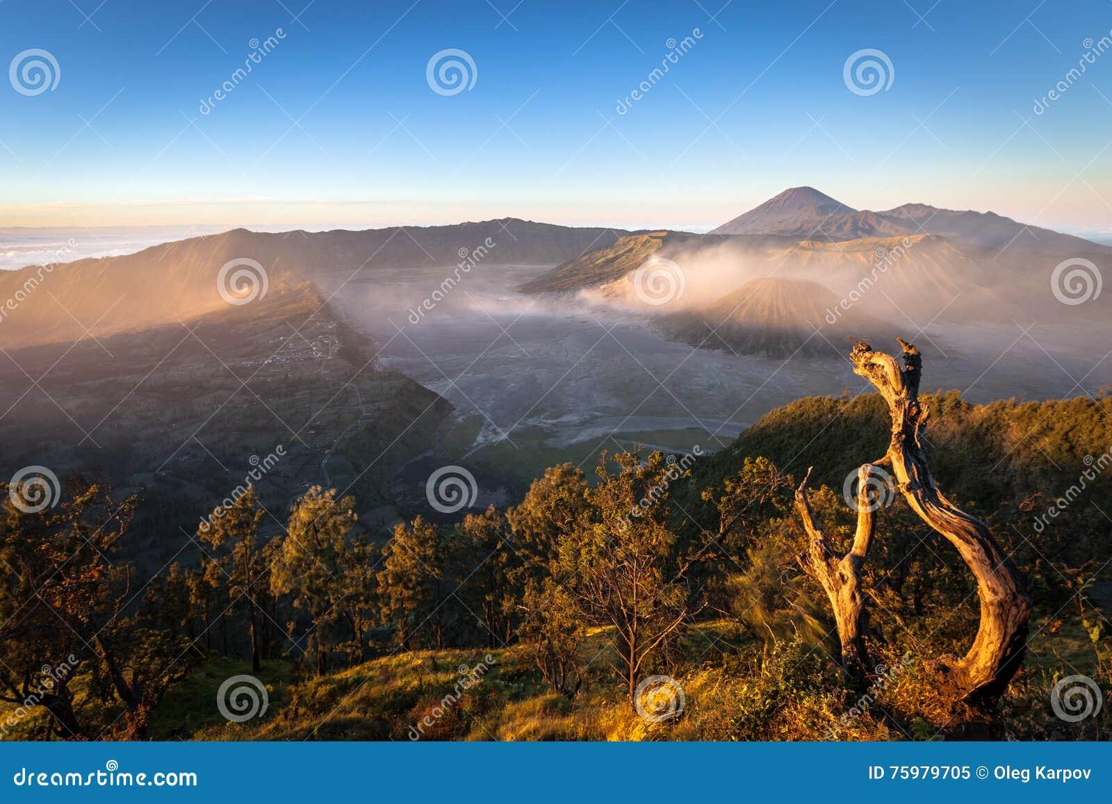 活火山在早晨光和塞梅鲁火山看见的Bromo, Java,印度尼西亚