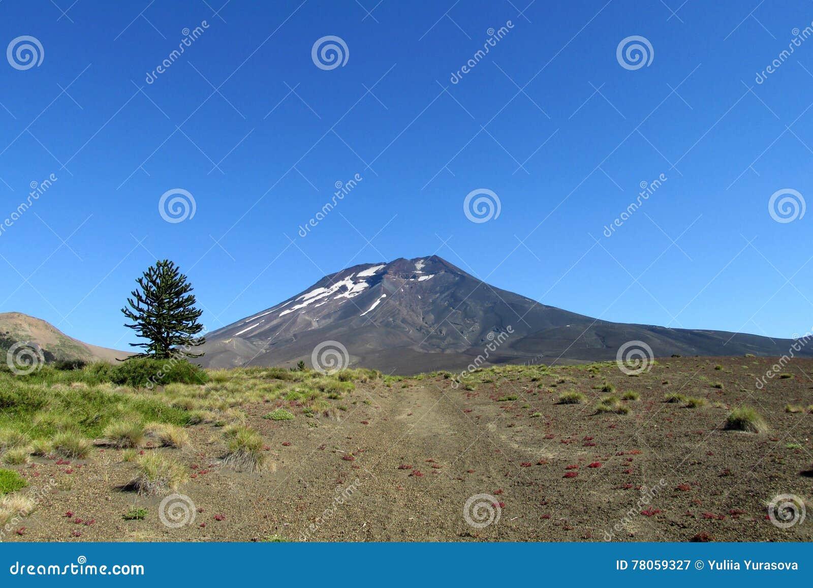 火山的风景在智利