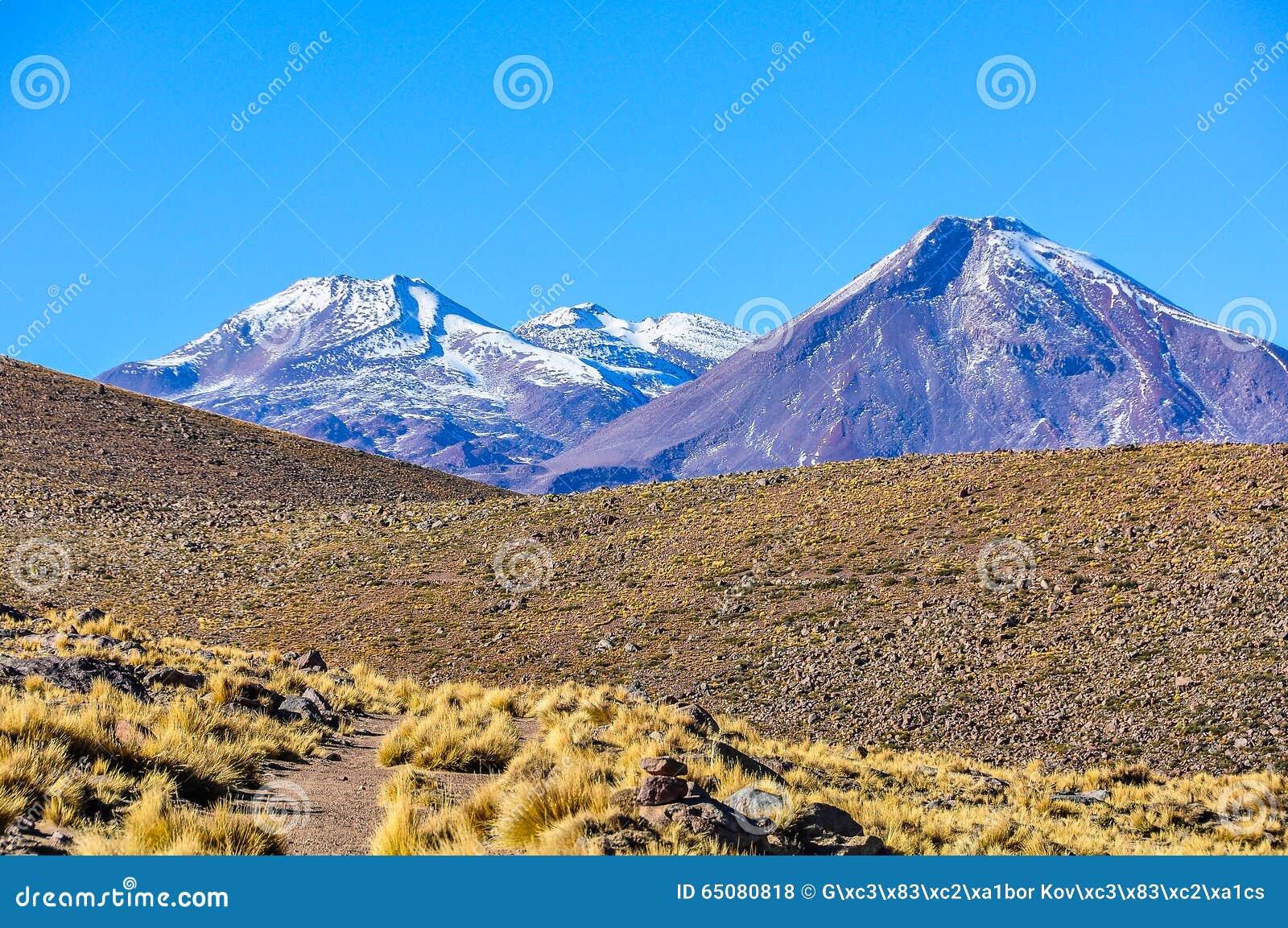 火山的风景在阿塔卡马沙漠,智利
