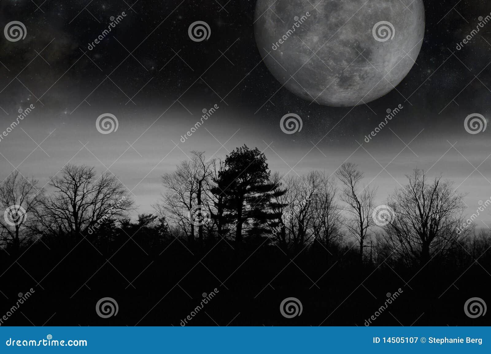 灰色月亮微明
