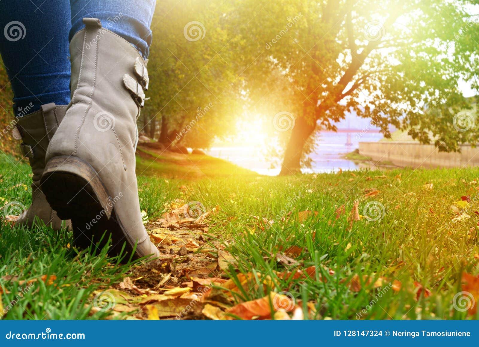 灰色鞋子和牛仔裤的妇女走在秋天森林道路的