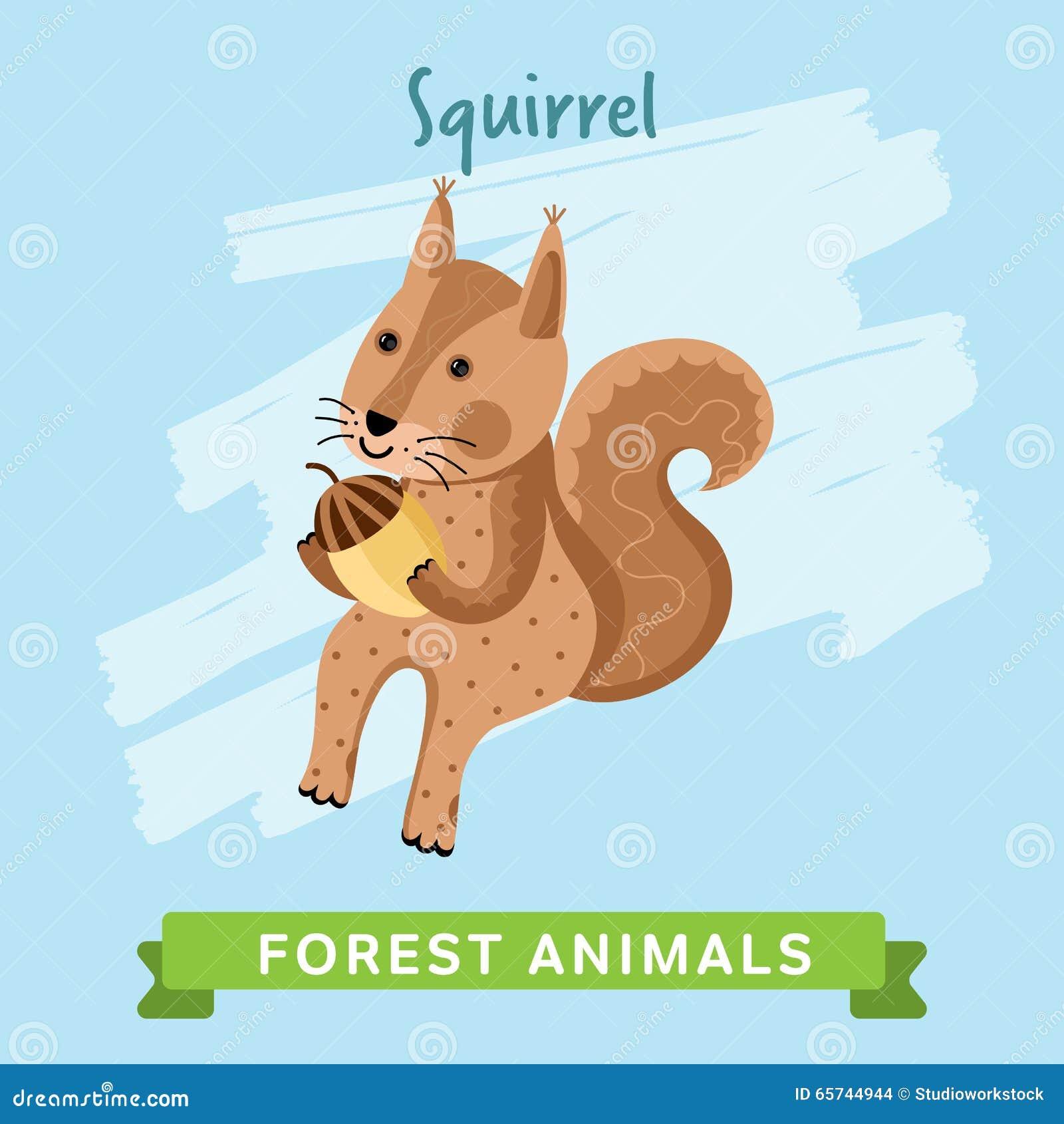 灰鼠传染媒介,森林动物图片