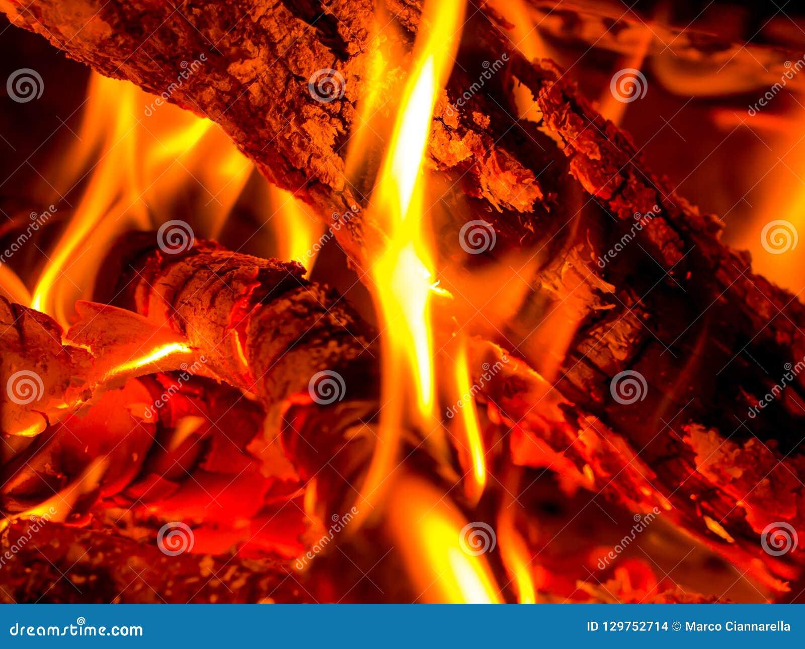 灼烧的木头