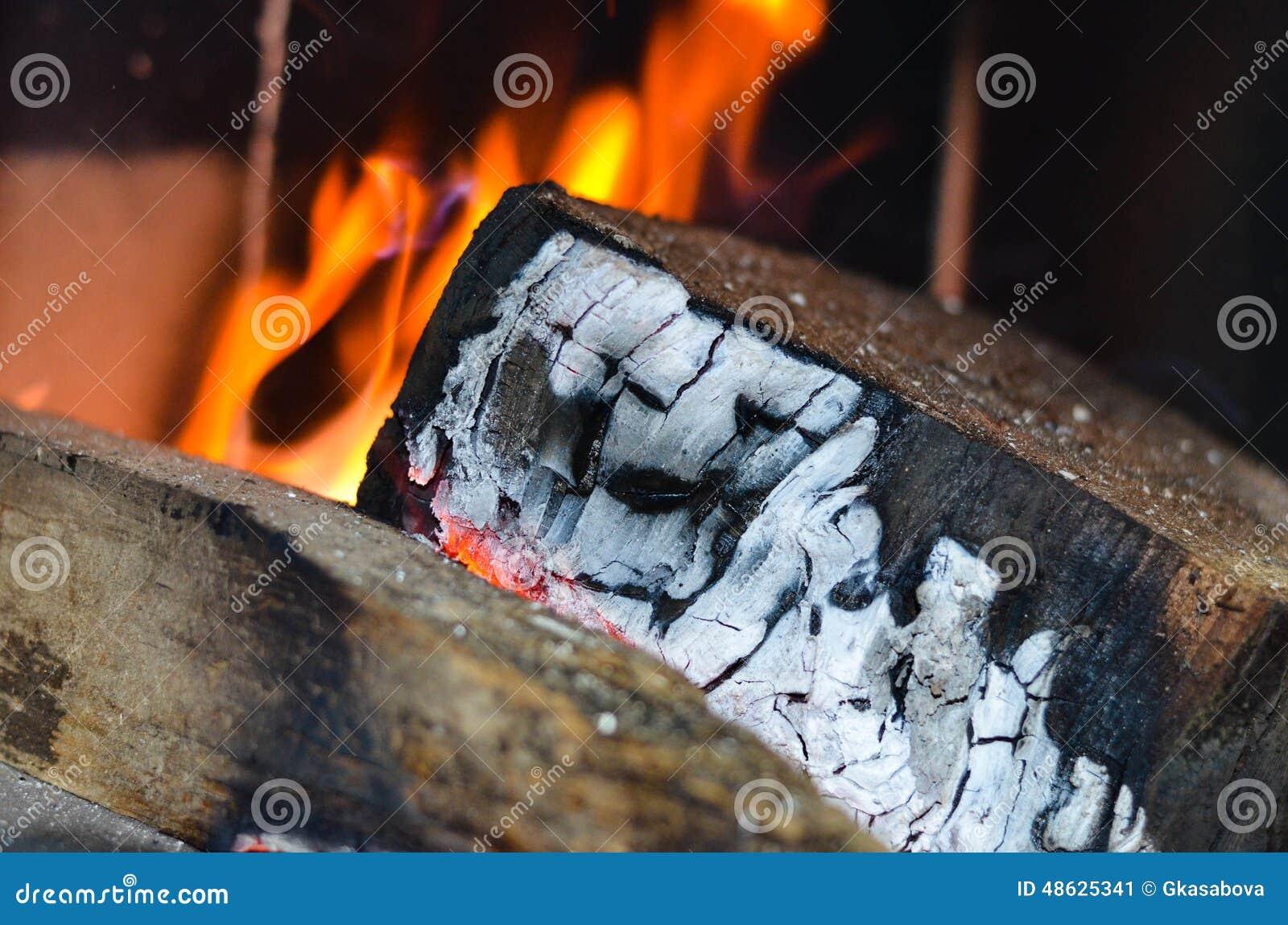 灼烧的火木头