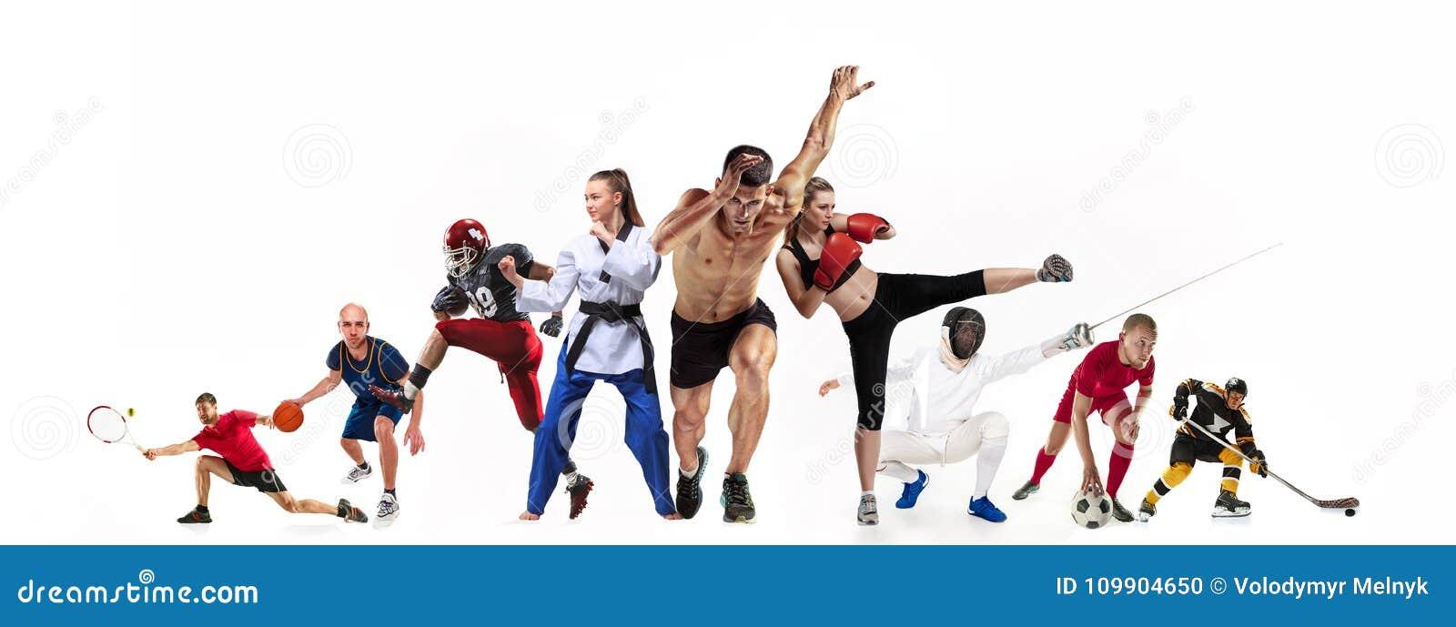 炫耀关于拳击,足球,橄榄球,篮球,冰球,操刀,跑步,跆拳道,网球的拼贴画