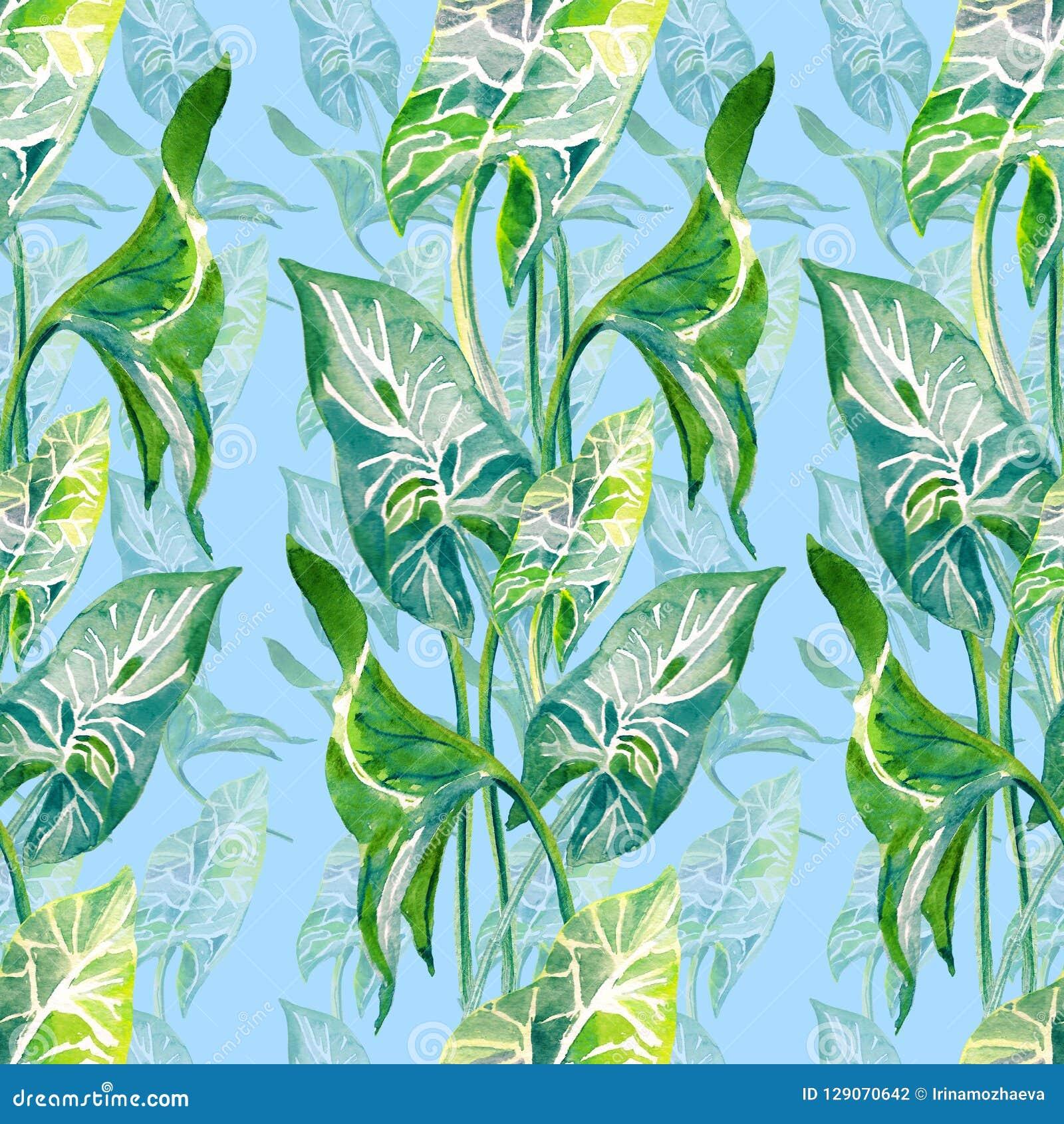 热带叶子无缝的垂直的样式 在蓝色背景隔绝的手拉的watercolo例证