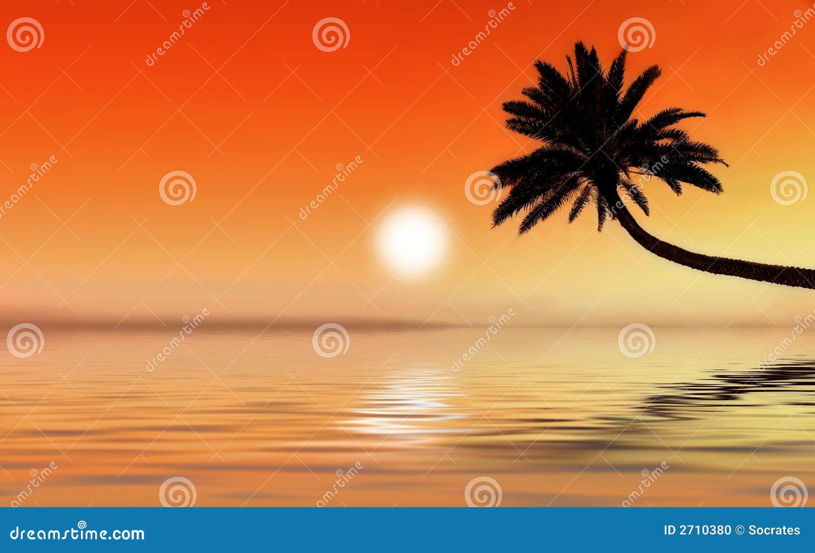 热带图标的日落