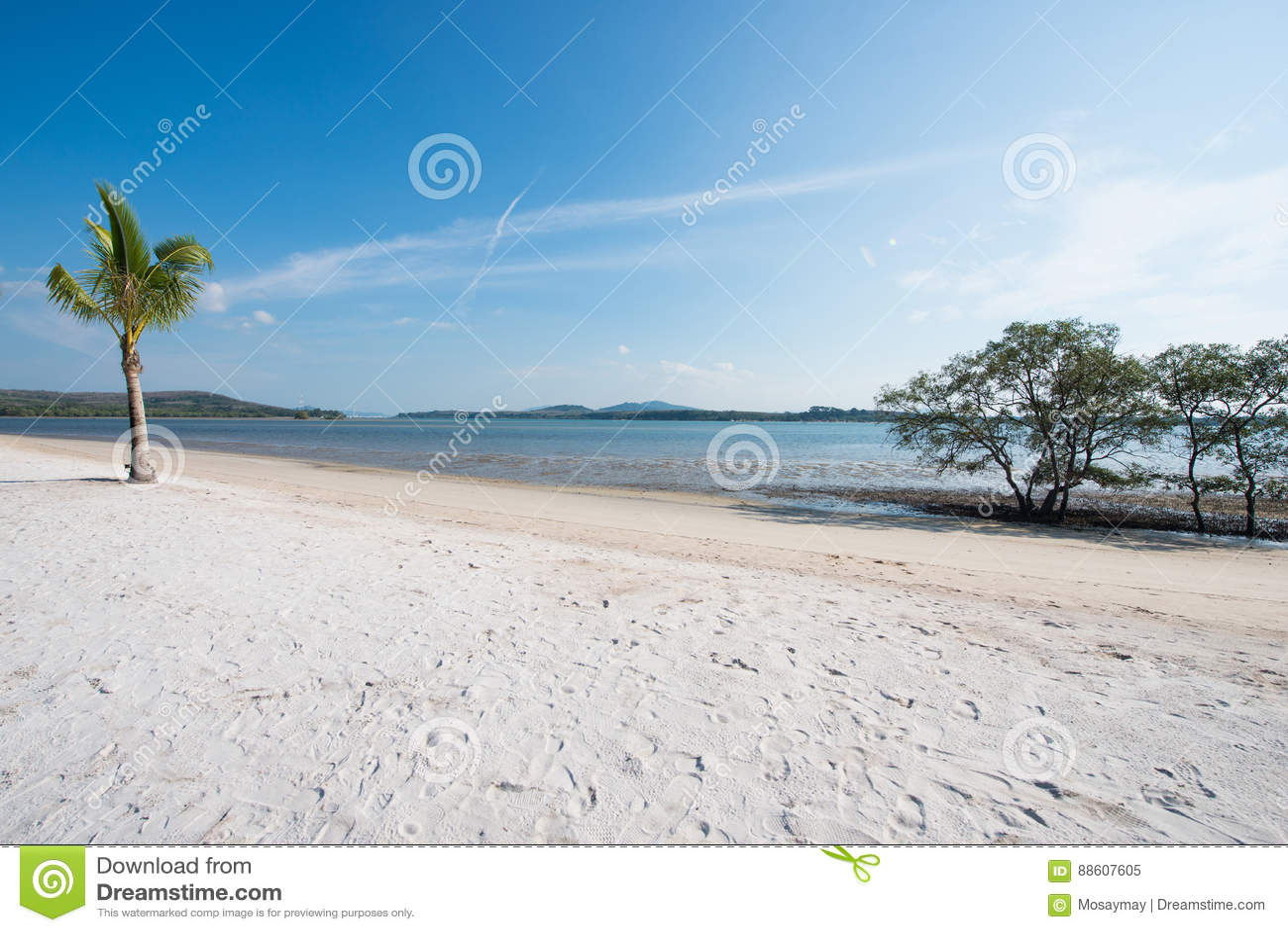 热带在海的海滩风景视图