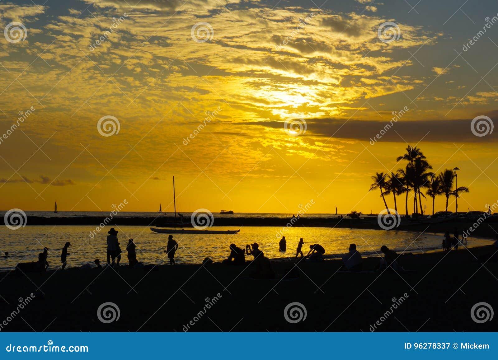 热带日落金黄天空