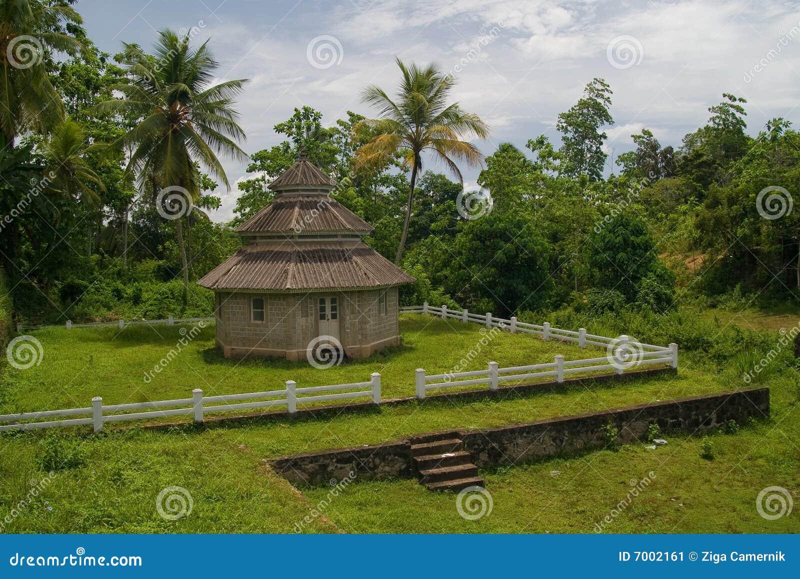 热带村庄的森林