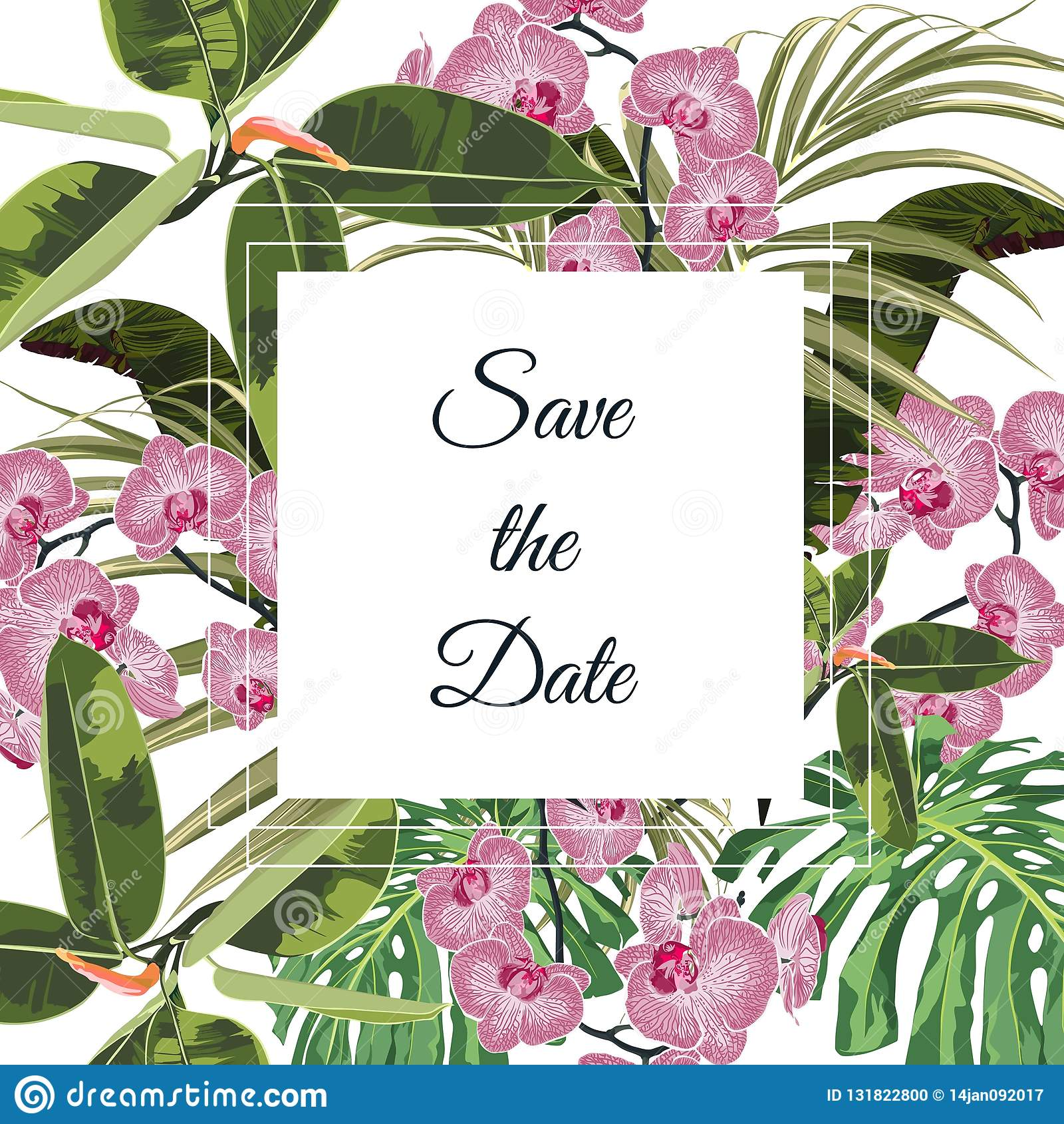 热带桃红色兰花花花束典雅的卡片模板 花卉海报,邀请