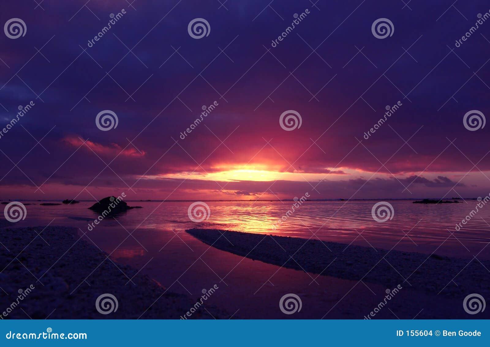 热带桃红色的日落