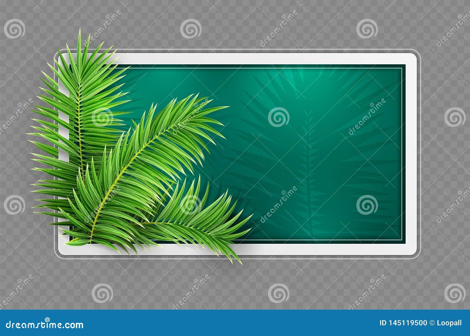 热带横幅框架 E r r