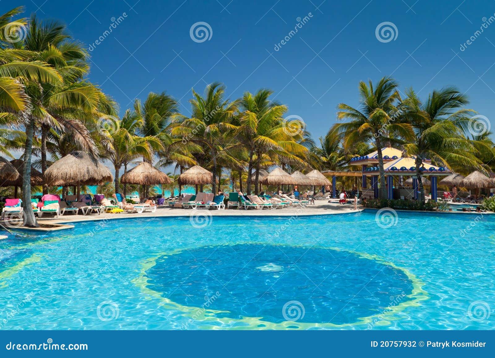 热带池的游泳