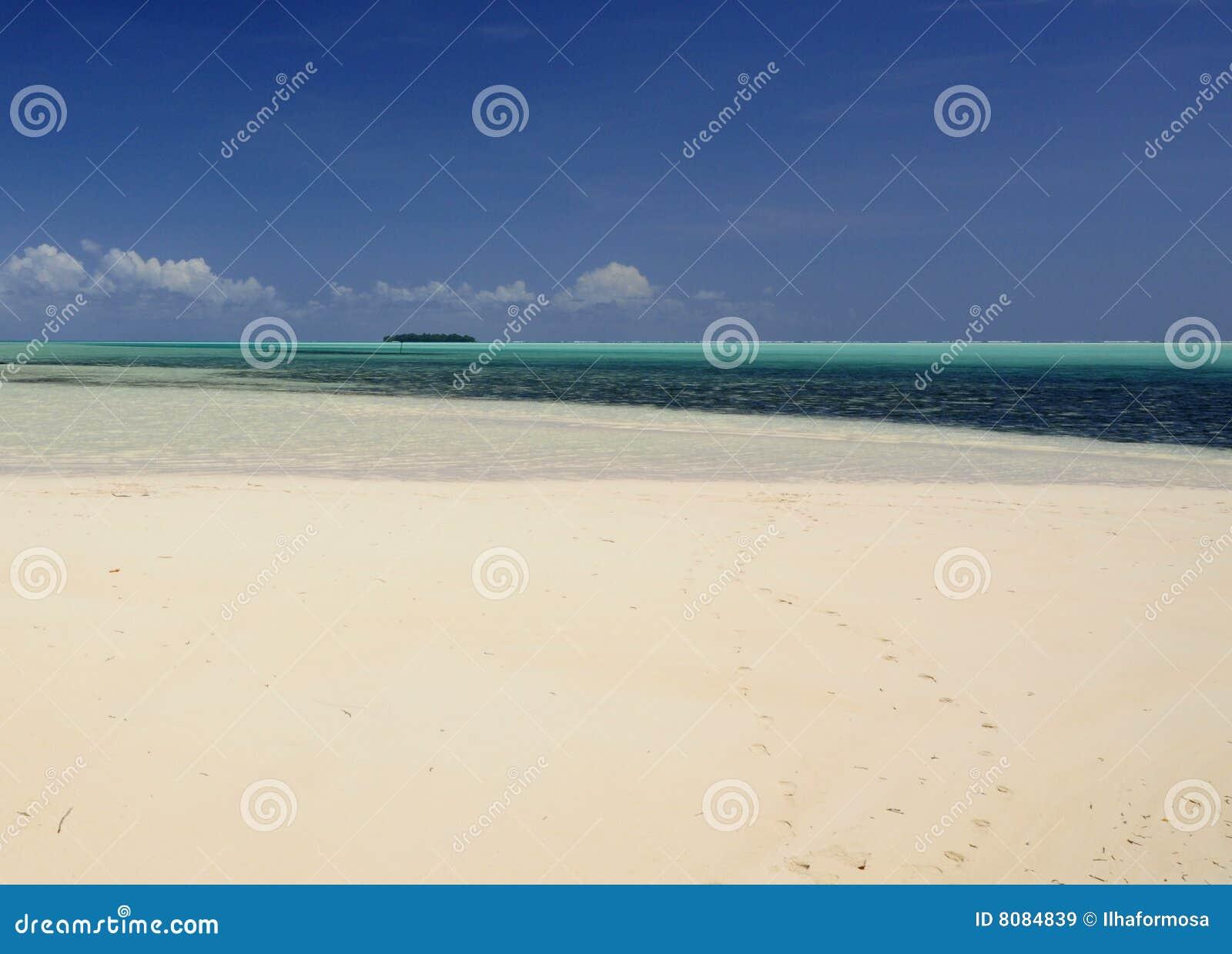 热带海滩的海洋图片