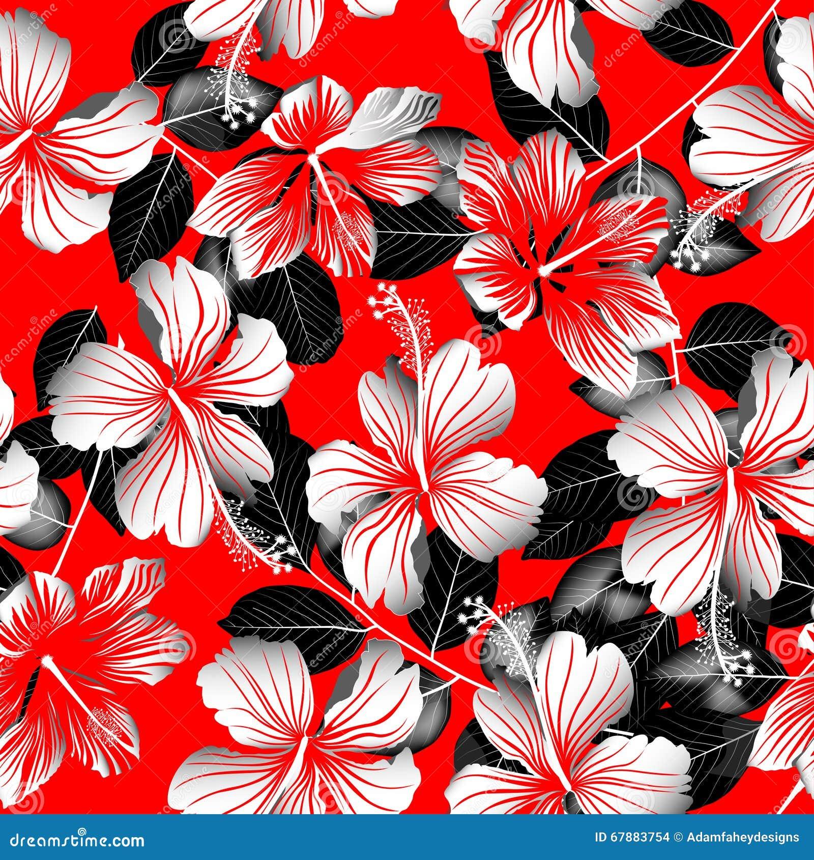 热带白色木槿开花与黑叶子无缝的patte