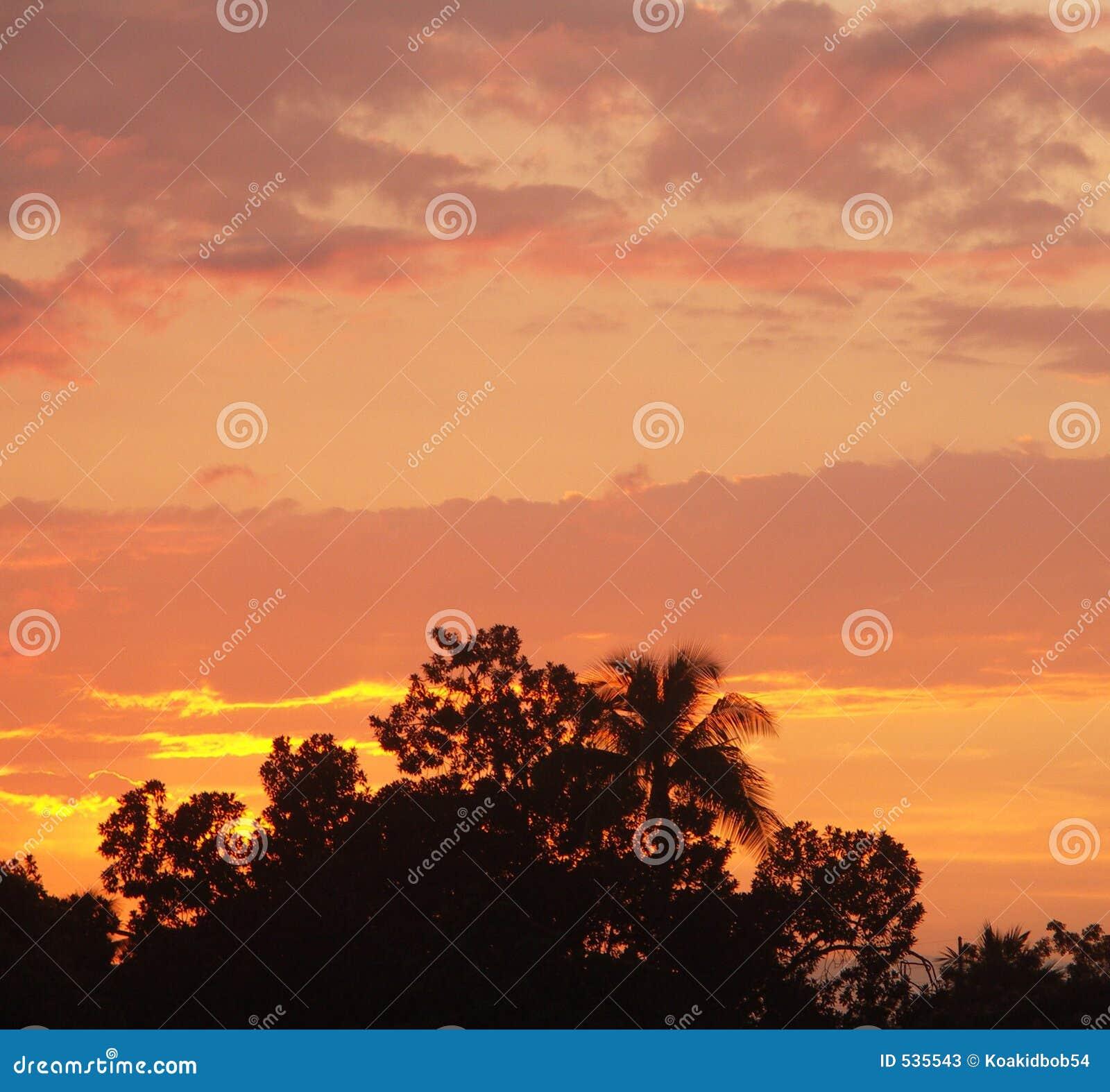 Download 热带的日落 库存图片. 图片 包括有 天气, 内存, 展望期, 风景, 假期, 云彩, 远离, 日落, 温暖 - 535543
