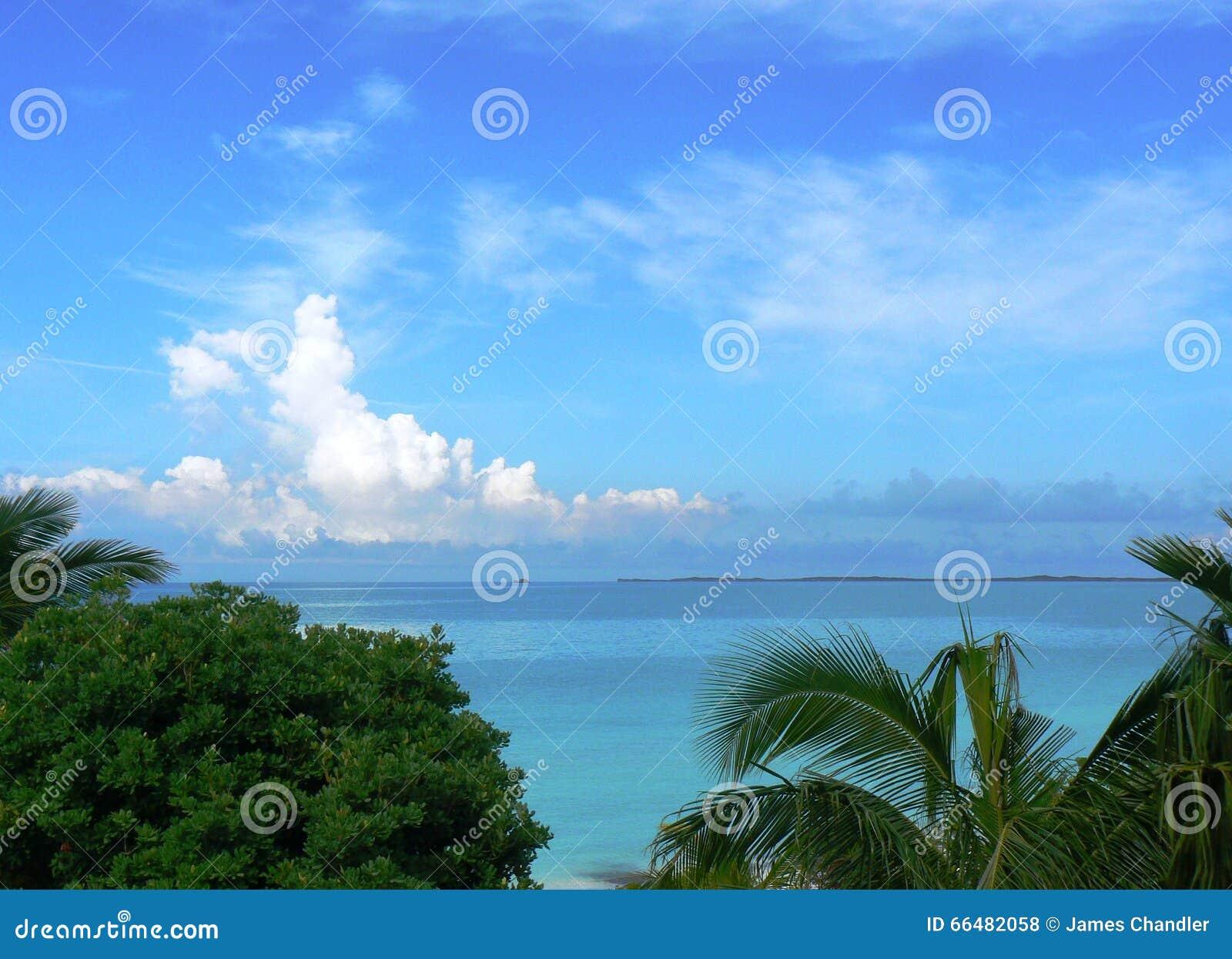 热带的海洋