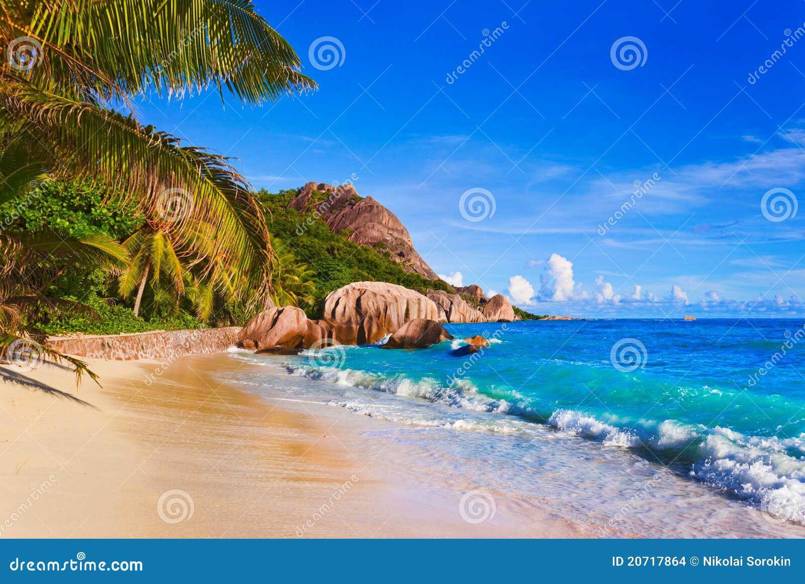 热带银海滩d塞舌尔群岛的来源