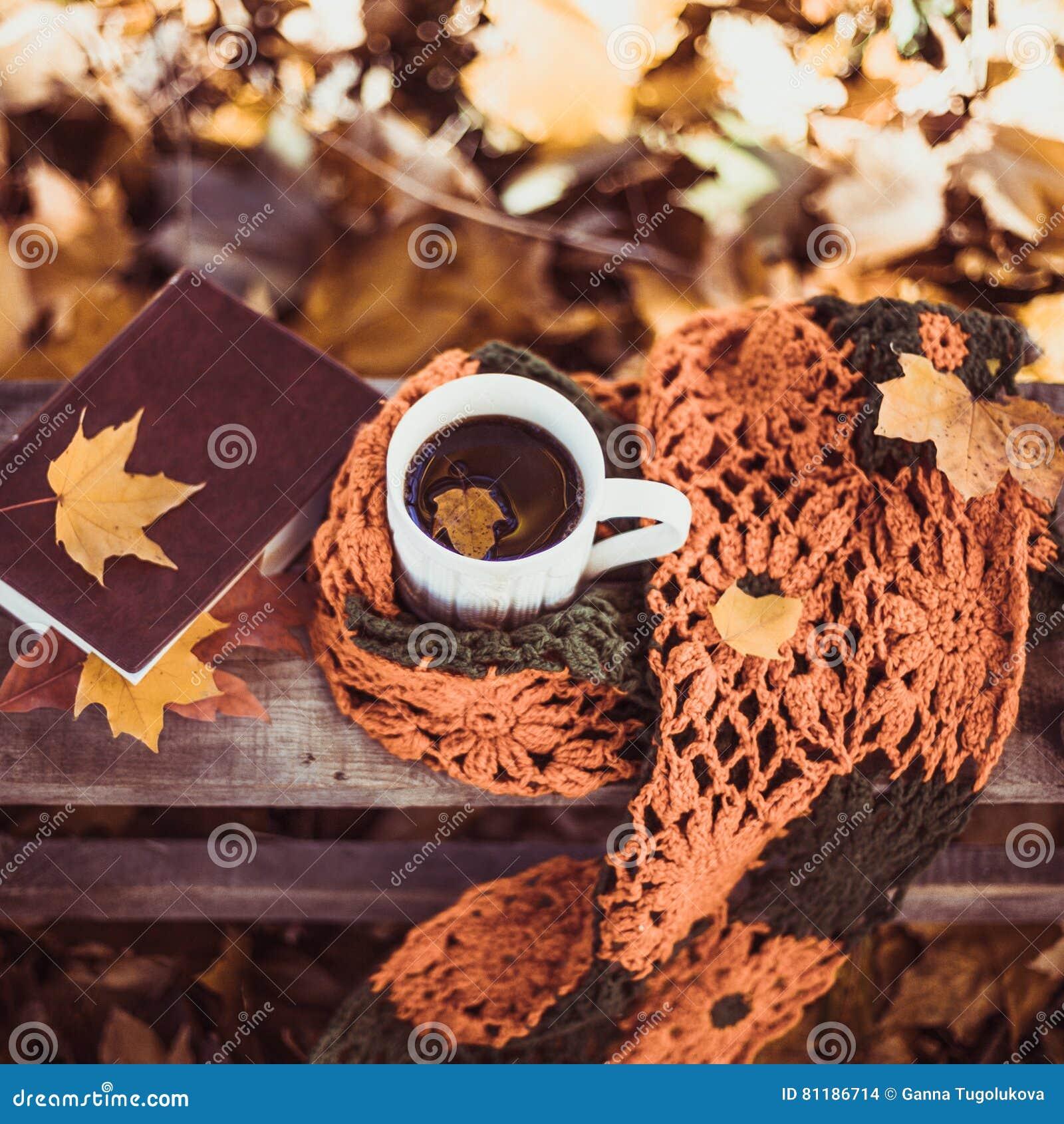 热的咖啡和红色书与秋叶在木背景-季节性放松概念